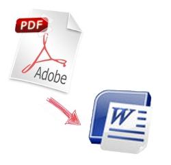 PDF in Word 15 lesen